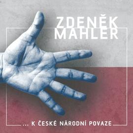 ...k české národní povaze