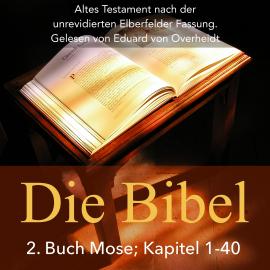 Bibel Buch