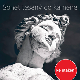 Audiokniha Jan Berger: Sonet tesaný do kamene  - autor Jan Berger   - interpret více herců