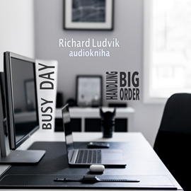 Audiokniha Busy Day - Handling Big Order  - autor Richard Ludvík   - interpret Richard Ludvík