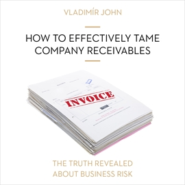 Audiokniha How to effectively tame company receivables  - autor Vladimír John   - interpret více herců