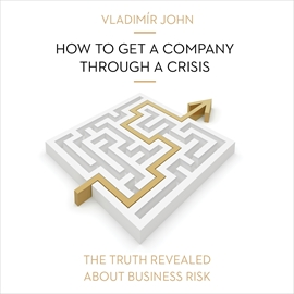 Audiokniha How to get a company through a crisis  - autor Vladimír John   - interpret více herců