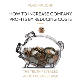 Audiokniha How to increase company profits by reducing costs  - autor Vladimír John   - interpret více herců