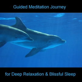 Hörbuch Guided Meditation Journey - Dolphins - Beach - Sea  - Autor Anke Moehlmann   - gelesen von Diverse