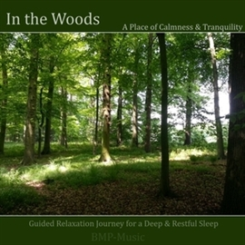 Hörbuch In the Woods - Guided Relaxation Journey for a Deep & Restful Sleep  - Autor Anke Moehlmann   - gelesen von BMP-Music