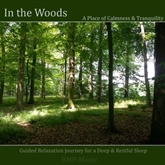 In the Woods - Guided Relaxation Journey for a Deep & Restful Sleep