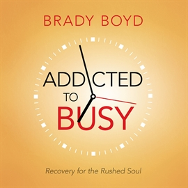 Hörbuch Addicted to Busy  - Autor Wes Bleed   - gelesen von Brady Boyd