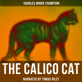 The Calico Cat
