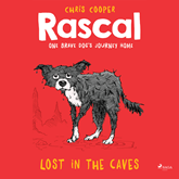 Lost in the Caves (Rascal 1)