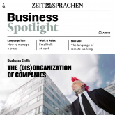 Business-Englisch lernen Audio - The (dis)organization of companies