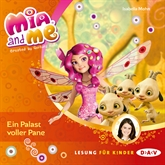 Ein Palast voller Pane (Mia and me 12)