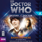 Destiny of the Doctor, Series 1.4: Babblesphere