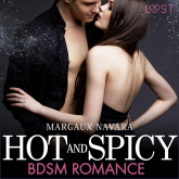 Hot and Spicy - BDSM Romance