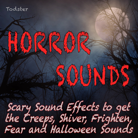 Hörbuch Horror Sounds - Scary Sound Effects to Get the Creeps, Shiver, Frighten, Fear and Halloween Sounds  - Autor Todster   - gelesen von Todster