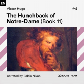 The Hunchback of Notre-Dame (Book 11)
