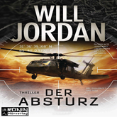 Der Absturz (Ryan Drake 2)