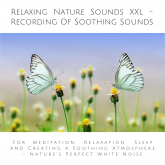 Relaxing Nature Sounds XXL (without music) - Recording Of Soothing Nature Sounds