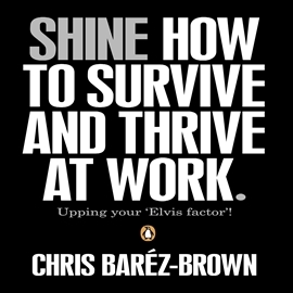 Audiobook SHINE  - autor Chris Barez-Brown   - czyta Chris Barez-Brown