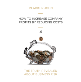 Audiobook HOW TO INCREASE COMPANY PROFITS BY REDUCING COSTS  - autor Vladimir John   - czyta zespół aktorów